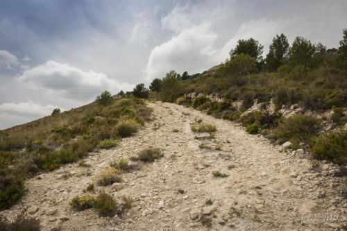 Camino del Somo